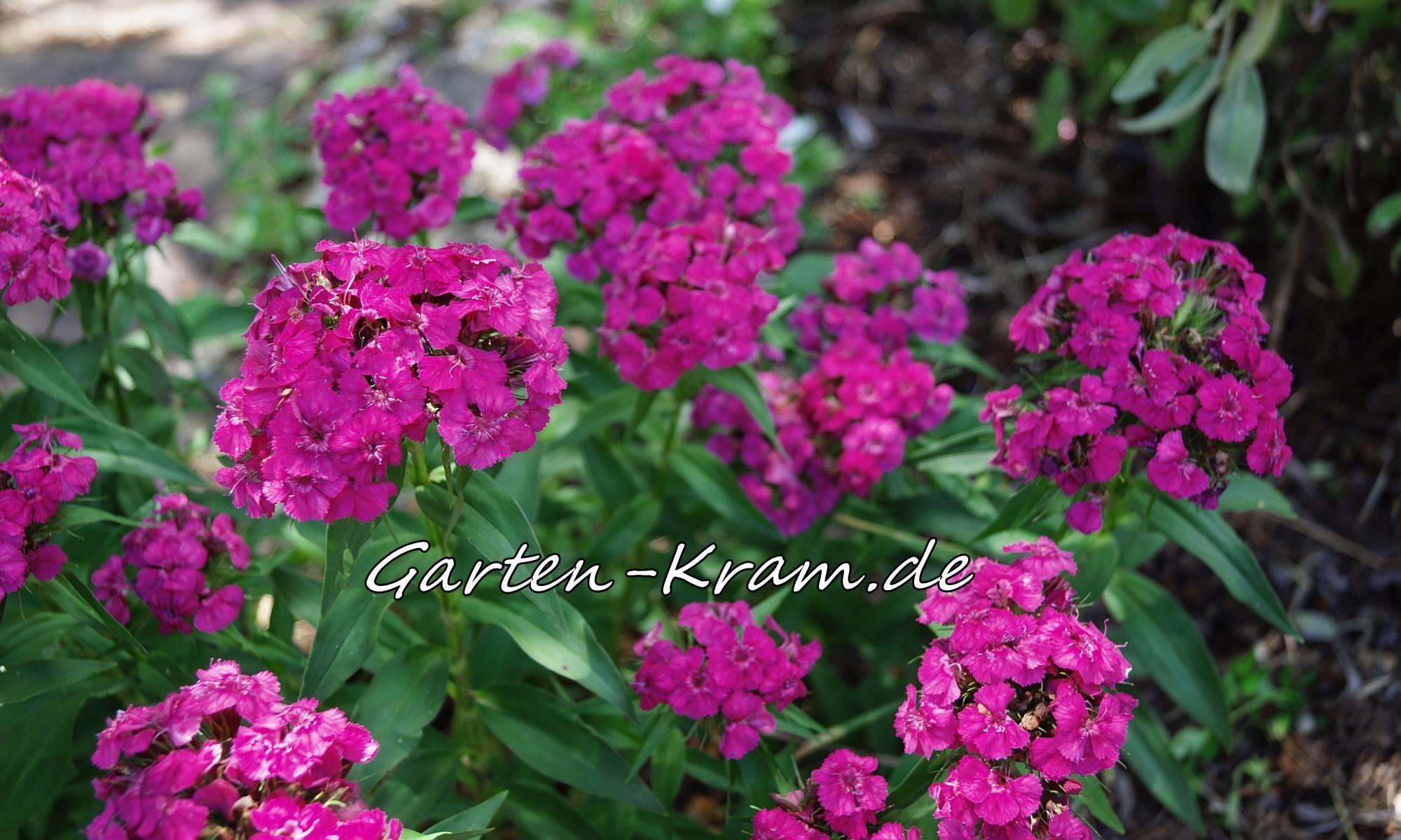Garten-Kram