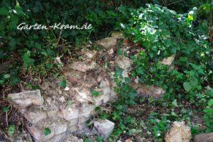 Steine und Efeu
